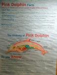 Delfines albinos y rosados
