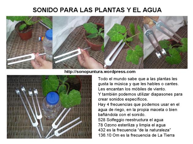 sonido plantas agua